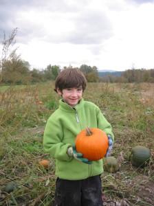 Pumpkins - Halloween 010